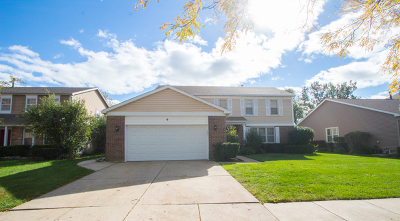 Buffalo Grove Single Family Home For Sale: 9 East Fabish Drive