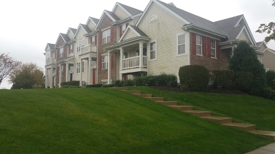 Pingree Grove Condo/Townhouse For Sale: 1263 Driftwood Lane
