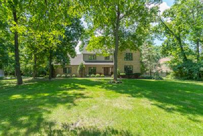 Joliet Single Family Home For Sale: 24457 West Kipling Court