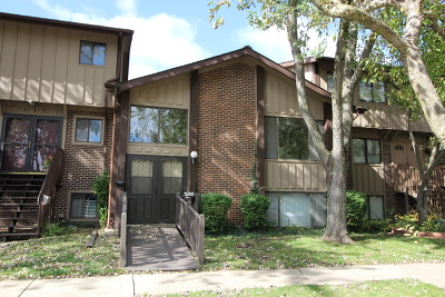 Roselle Condo/Townhouse New: 614 East Devon Avenue #614