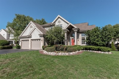 Lake Zurich Single Family Home For Sale: 745 Pheasant Ridge Court