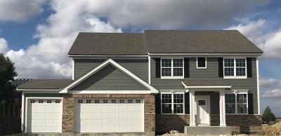Plainfield Single Family Home For Sale: 13422 Summergrove Drive