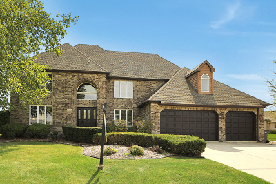 Orland Park Single Family Home Re-Activated: 10653 Maue Drive