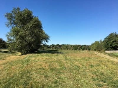 Plainfield Residential Lots & Land For Sale: Lot 5 Pine Cone Lane