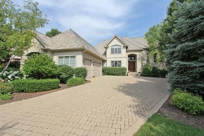 Vernon Hills IL Single Family Home New: $899,000