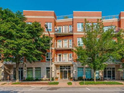 Evanston IL Condo/Townhouse New: $595,000
