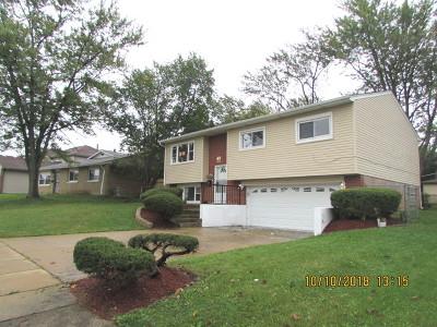 University Park IL Single Family Home New: $149,900