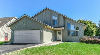 Joliet Single Family Home New: 1606 North Overlook Drive