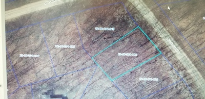 Ogle County Residential Lots & Land For Sale: 711&713 & 715 Mississippi Drive