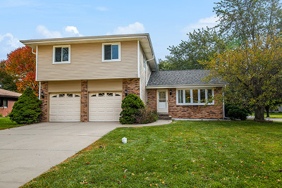 Schaumburg Single Family Home New: 133 South Knollwood Drive
