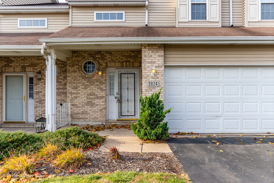 Joliet Condo/Townhouse New: 3824 Pathfinder Lane #3824