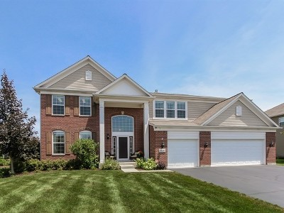 Carpentersville Single Family Home For Sale: 3520 Langston Lane