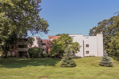 Elgin Condo/Townhouse New: 1830 West Highland Avenue #D302