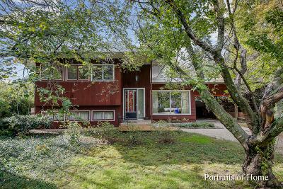 Glen Ellyn Single Family Home New: 881 Glen Oak Avenue
