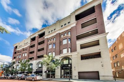 Oak Park Condo/Townhouse For Sale: 110 South Marion Street #308