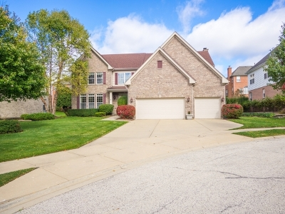 Palatine Single Family Home New: 460 West Haleys Hill Court