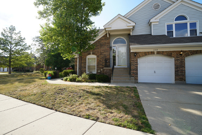 Buffalo Grove Condo/Townhouse New: 359 Satinwood Court South
