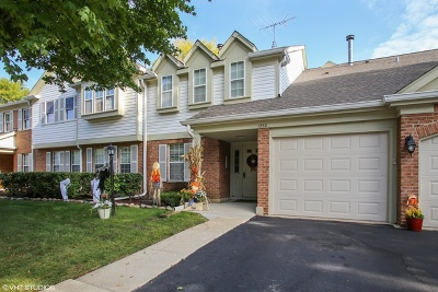Schaumburg Condo/Townhouse New: 1258 Rosewood Court #C1