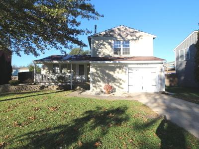 Frankfort Single Family Home New: 20636 South Acorn Ridge Drive