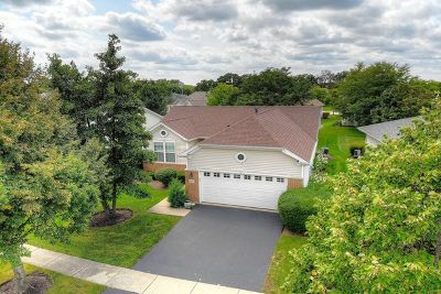 Huntley Single Family Home For Sale: 13241 Indiana Court