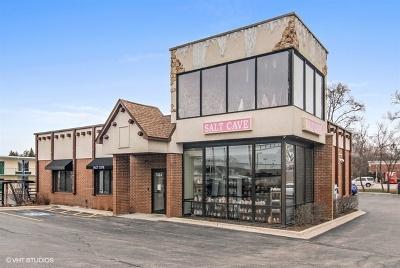 Naperville Commercial For Sale: 1324 East Ogden Avenue