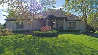 Lakewood Single Family Home For Sale: 6203 Brighton Lane