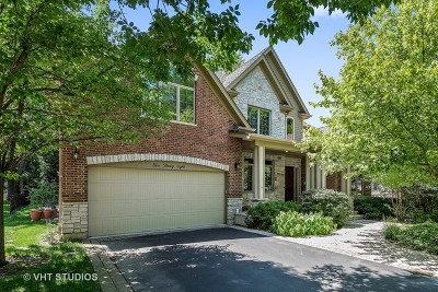 Deerfield Single Family Home For Sale: 1038 Prairie Avenue