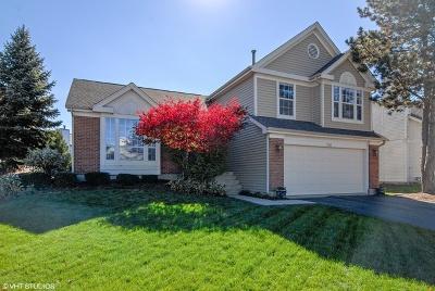 Aurora Single Family Home New: 360 Meadow Lakes Boulevard