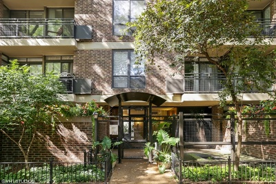 Chicago Condo/Townhouse New: 2600 North Hampden Court #D5