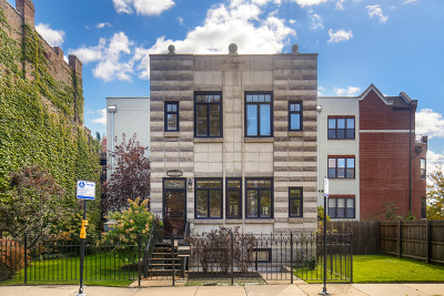 Chicago Single Family Home New: 1207 East 44th Place