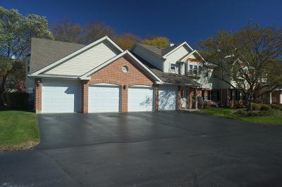 Palatine Condo/Townhouse New: 1393 East Evergreen Drive #3017-4