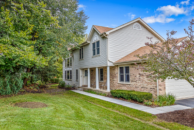 Hoffman Estates Condo/Townhouse For Sale: 1060 Sweetflower Drive
