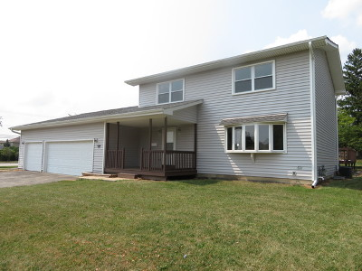 Lemont Single Family Home For Sale: 1238 Hillview Drive