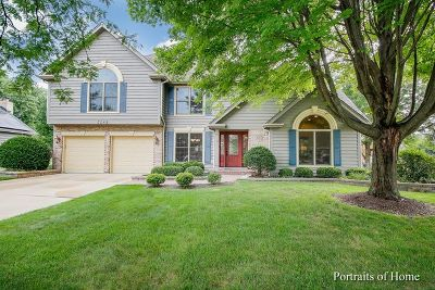 Naperville Single Family Home For Sale: 3548 Eliot Lane
