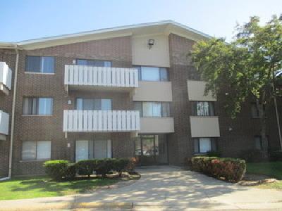 Palatine Rental New: 3000 Bayside Drive #308