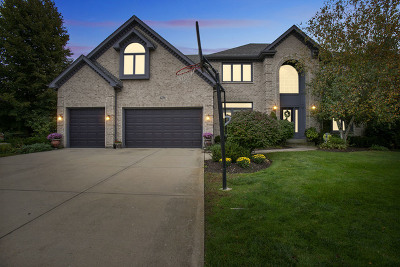 Naperville Single Family Home New: 4276 Colton Circle