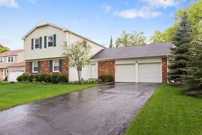 Buffalo Grove Single Family Home New: 30 Timber Hill Road