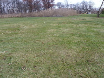 Orland Park Residential Lots & Land For Sale: 16430 118th Place