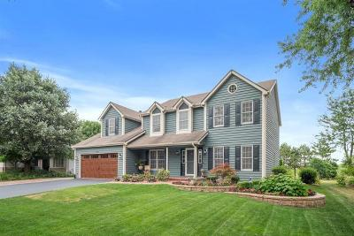 Naperville Single Family Home New: 5324 Coneflower Drive