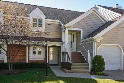 Buffalo Grove Condo/Townhouse New: 361 Covington Terrace