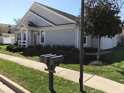 Huntley Condo/Townhouse New: 12511 Rock Island Trail #1251