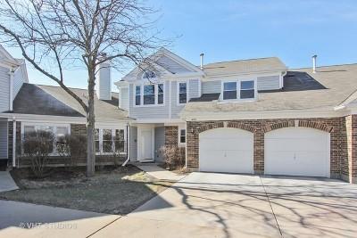 Buffalo Grove Condo/Townhouse New: 499 Banyan Tree Lane #499