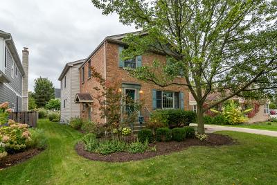 Elmhurst Single Family Home New: 617 South Linden Avenue