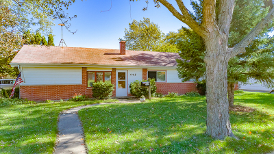 Hoffman Estates Single Family Home New: 445 Lincoln Drive