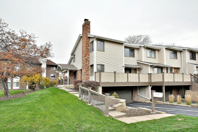 Northbrook Condo/Townhouse For Sale: 1014 Sussex Drive #1014
