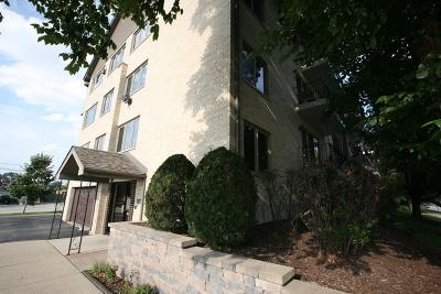 Oak Lawn Condo/Townhouse New: 4560 West 93rd Street #2A