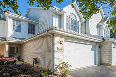 Orland Park Condo/Townhouse New: 9933 Constitution Drive