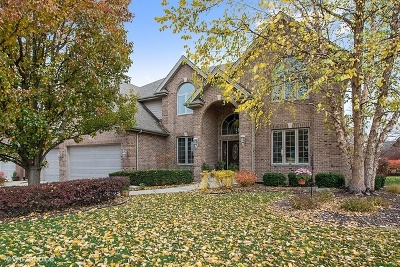 Orland Park Single Family Home For Sale: 14113 South 86th Place