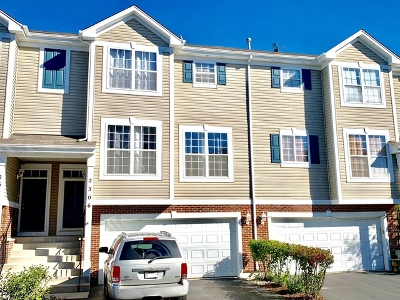 Du Page County Condo/Townhouse New: 2306 Hudson Circle