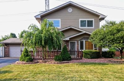 Homer Glen Single Family Home For Sale: 13820 West Shady Lane